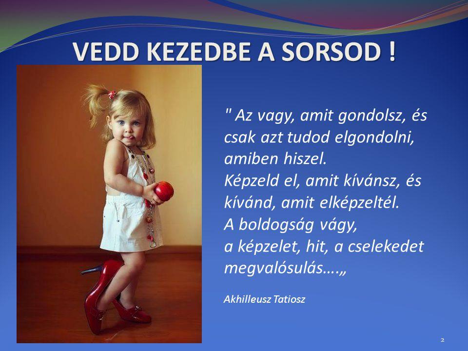VEDD KEZEDBE A SORSOD ! 2