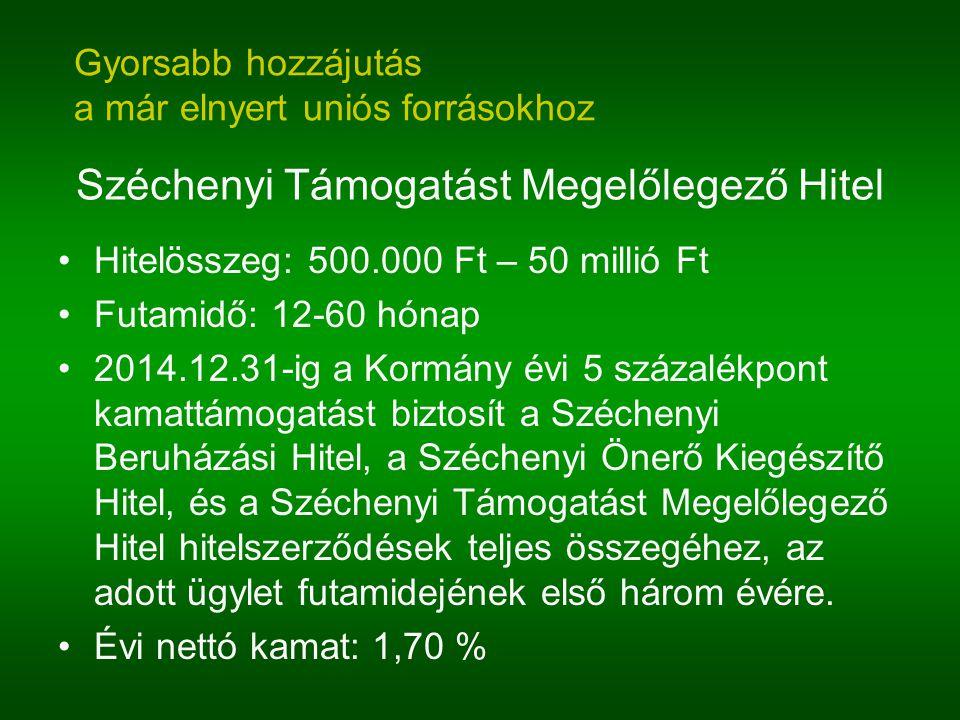 Széchenyi Támogatást Megelőlegező Hitel Hitelösszeg: 500.000 Ft – 50 millió Ft Futamidő: 12-60 hónap 2014.12.31-ig a Kormány évi 5 százalékpont kamatt