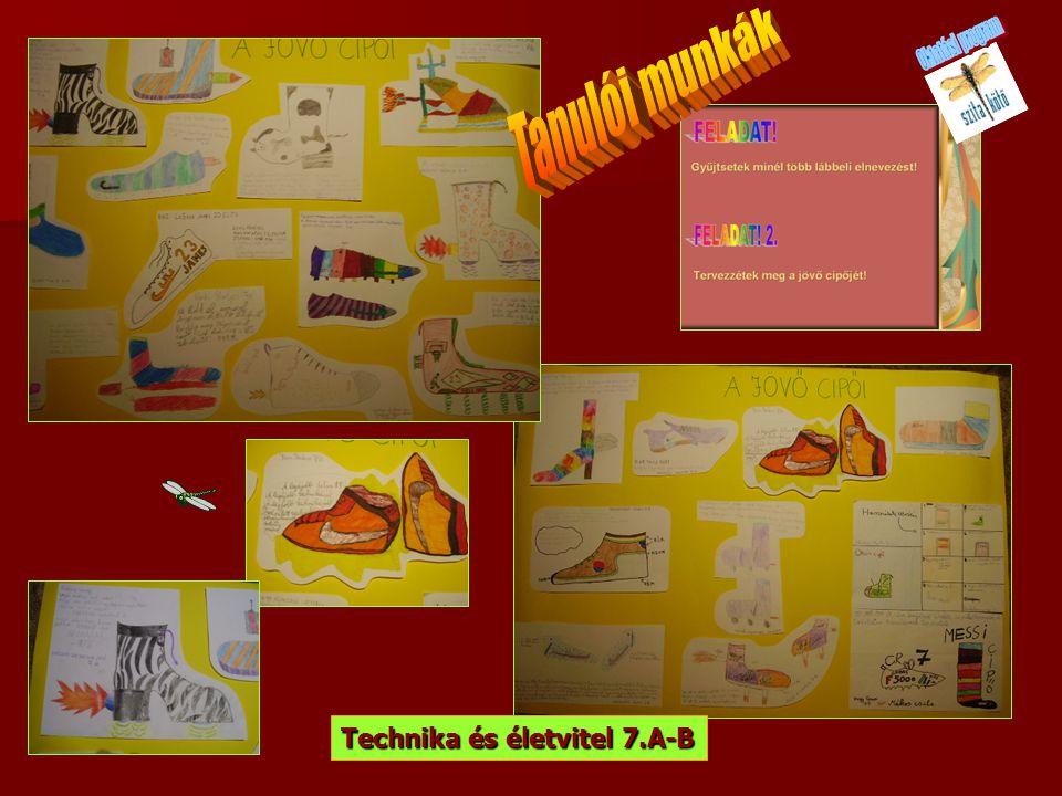 Technika és életvitel 7.A-B