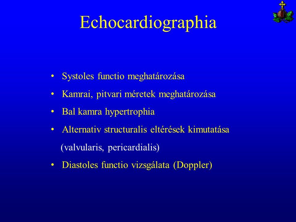 Echocardiographia Systoles functio meghatározása Kamrai, pitvari méretek meghatározása Bal kamra hypertrophia Alternativ structuralis eltérések kimuta