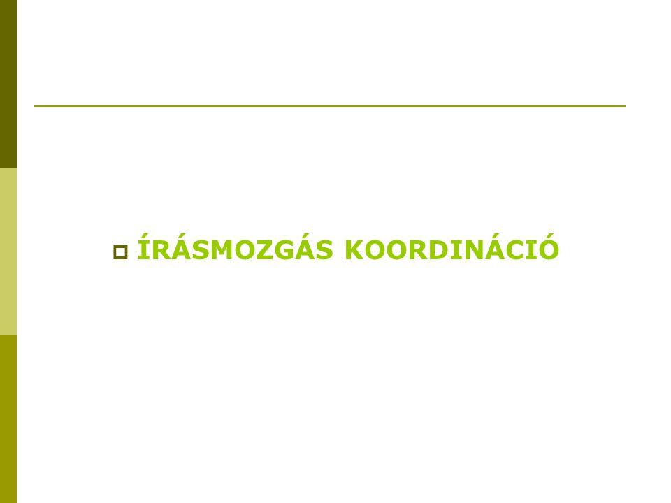  ÍRÁSMOZGÁS KOORDINÁCIÓ