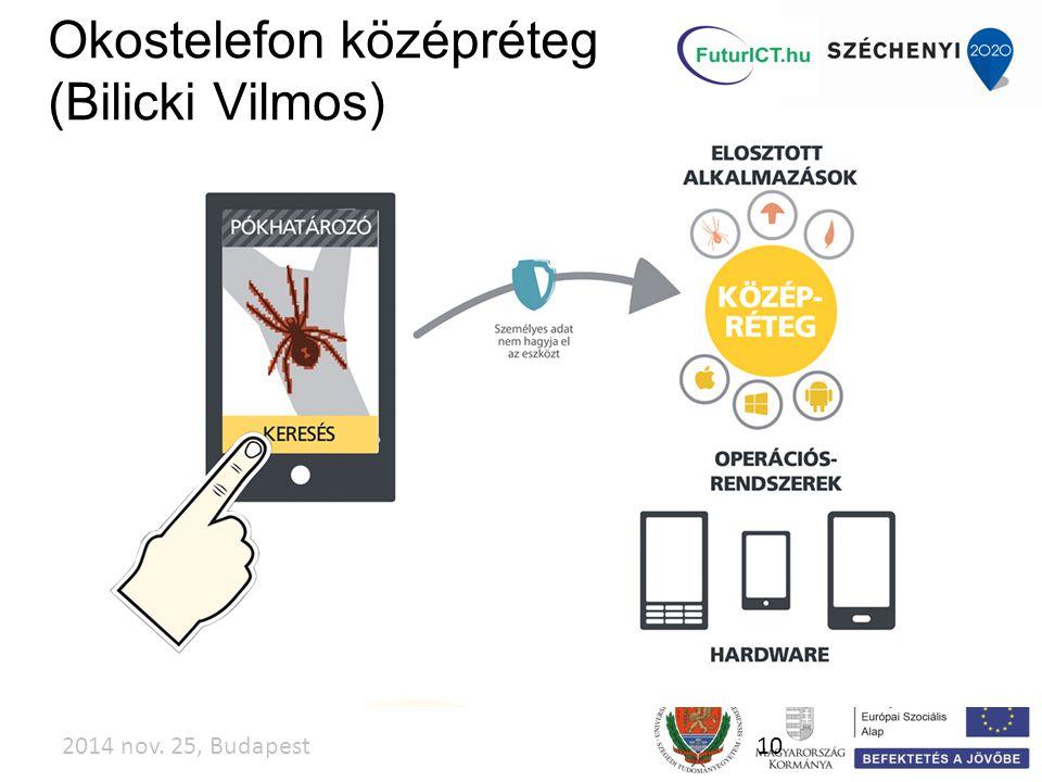 2014 nov. 25, Budapest10 Okostelefon középréteg (Bilicki Vilmos)