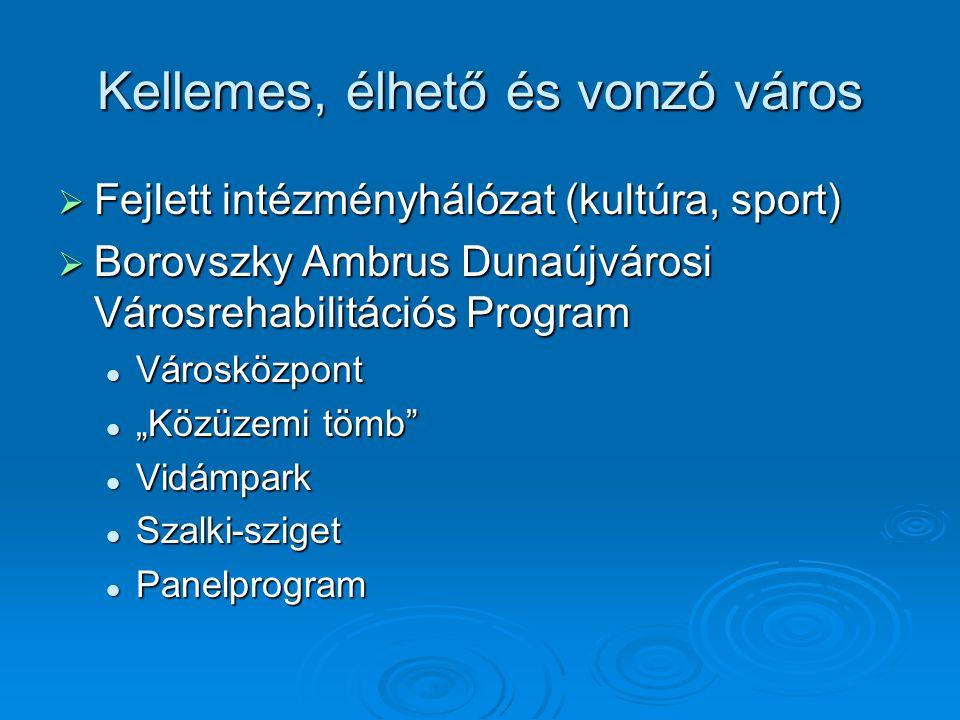 """Kellemes, élhető és vonzó város  Fejlett intézményhálózat (kultúra, sport)  Borovszky Ambrus Dunaújvárosi Városrehabilitációs Program Városközpont Városközpont """"Közüzemi tömb """"Közüzemi tömb Vidámpark Vidámpark Szalki-sziget Szalki-sziget Panelprogram Panelprogram"""
