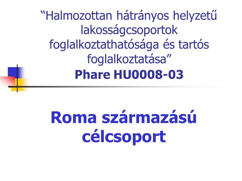 """""""Halmozottan hátrányos helyzetű lakosságcsoportok foglalkoztathatósága és tartós foglalkoztatása"""" Phare HU0008-03 Roma származású célcsoport"""