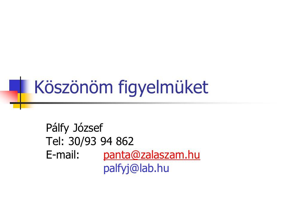 Köszönöm figyelmüket Pálfy József Tel: 30/93 94 862 E-mail:panta@zalaszam.hupanta@zalaszam.hu palfyj@lab.hu