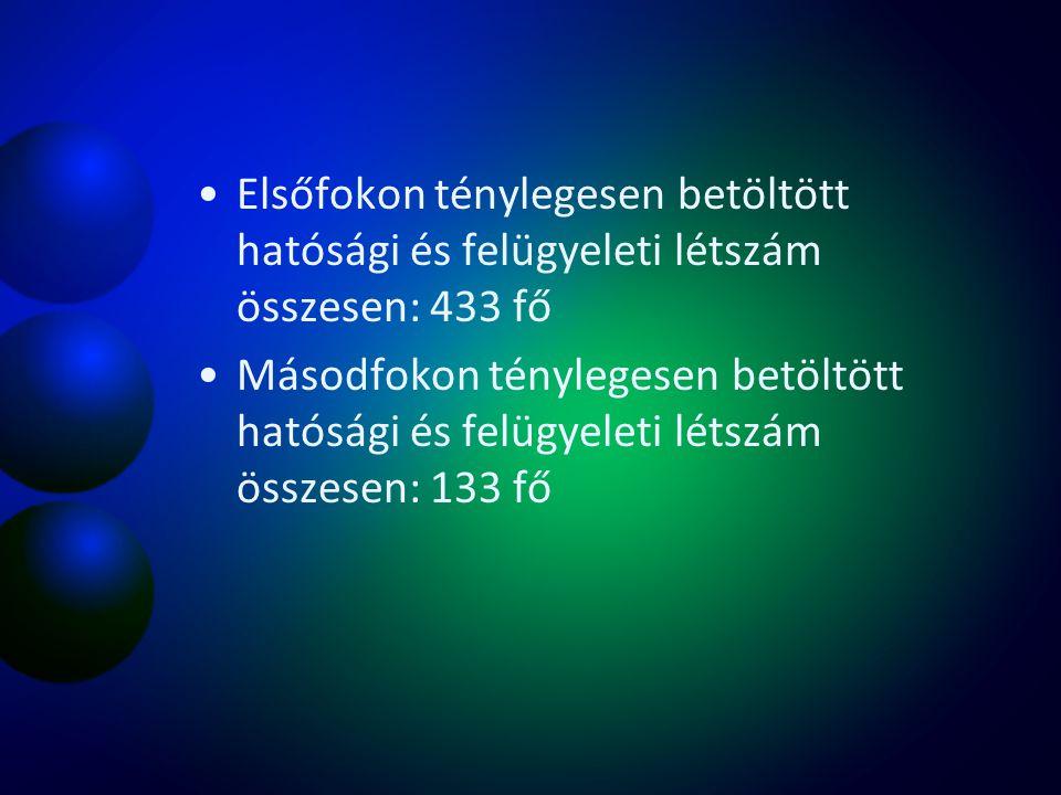 20062007200820092010201120122013 kivitele zés 71115268 Jegyző- könyv 8971413251739225140749064166707 bírság 37742804726008661026113 létszám 10 42 9582 210 ?
