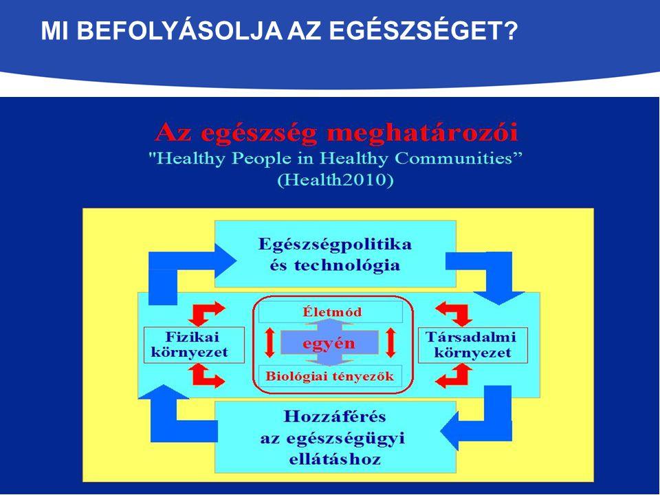 EGÉSZSÉGFEJLESZTÉS SZÉKESFEHÉRVÁR Kutatások,felmérések Politikusok interjúja, lakossági kérdőívek, egészségmutatók helyi és országos, egészségügyi szolgáltatók adatai Városi egészségkép megalkotása Egészségfejlesztési Terv 2011.