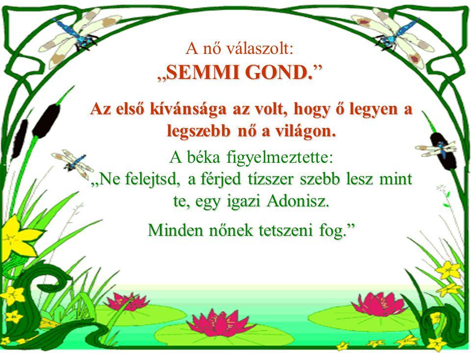"""""""SEMMI GOND. A nő válaszolt: """"SEMMI GOND. Az első kívánsága az volt, hogy ő legyen a legszebb nő a világon."""