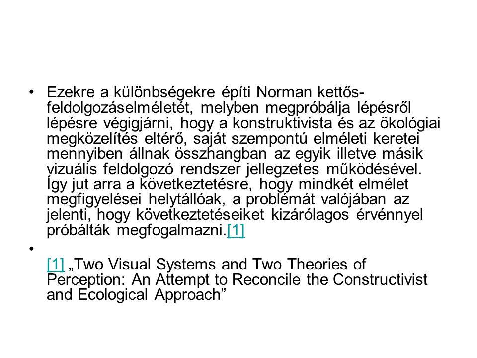 Ezekre a különbségekre építi Norman kettős- feldolgozáselméletét, melyben megpróbálja lépésről lépésre végigjárni, hogy a konstruktivista és az ökológ