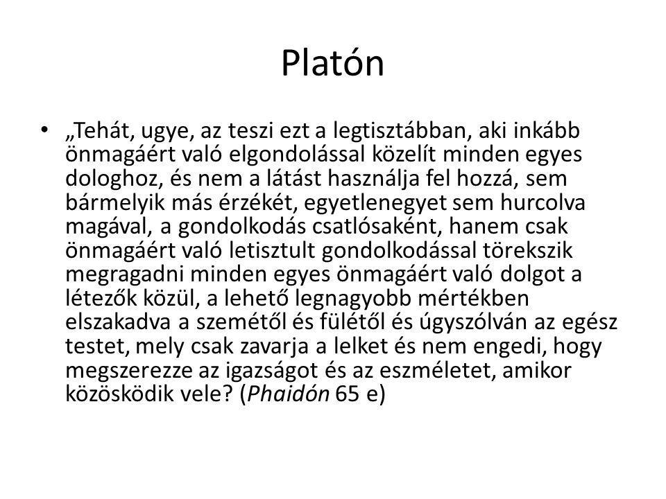 """Platón """"Tehát, ugye, az teszi ezt a legtisztábban, aki inkább önmagáért való elgondolással közelít minden egyes dologhoz, és nem a látást használja fe"""