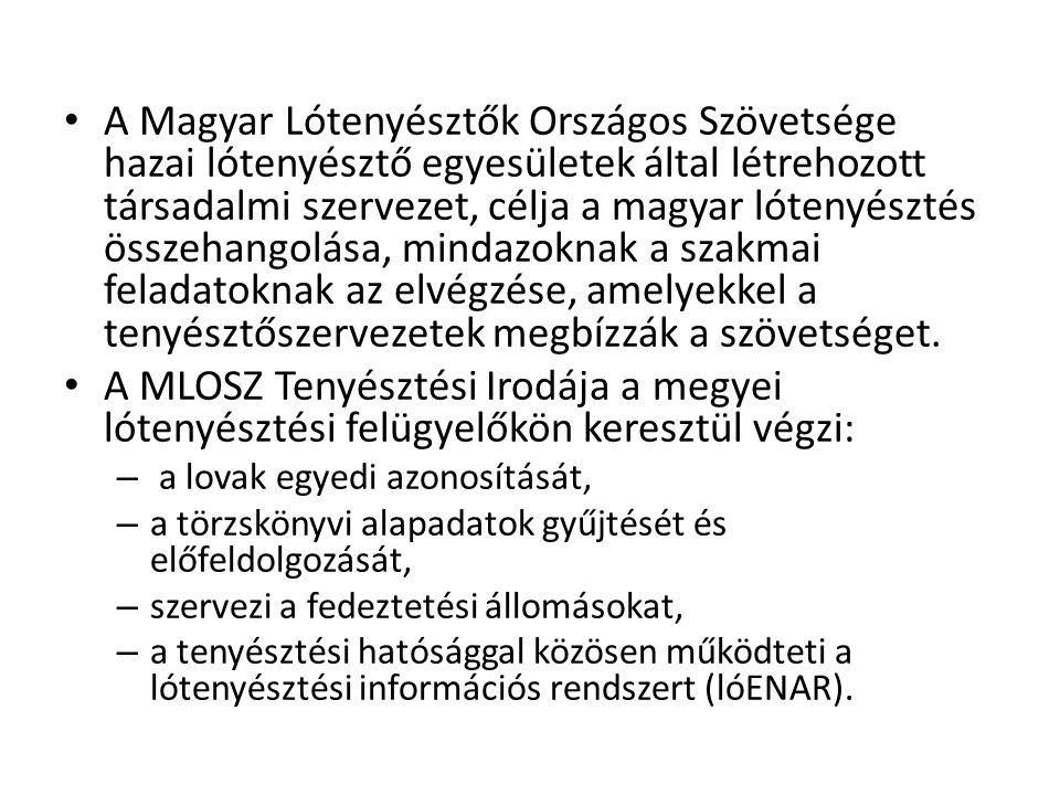 A Magyar Lótenyésztők Országos Szövetsége hazai lótenyésztő egyesületek által létrehozott társadalmi szervezet, célja a magyar lótenyésztés összehango