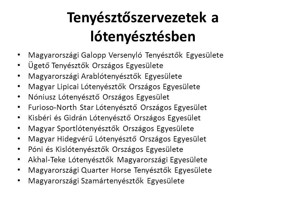 Tenyésztőszervezetek a lótenyésztésben Magyarországi Galopp Versenyló Tenyésztők Egyesülete Ügető Tenyésztők Országos Egyesülete Magyarországi Arablót