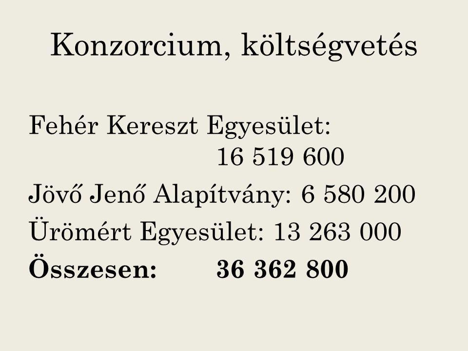 Megvalósítás 1. Projekt időtartama 2012.09.01- 2014.02.28.