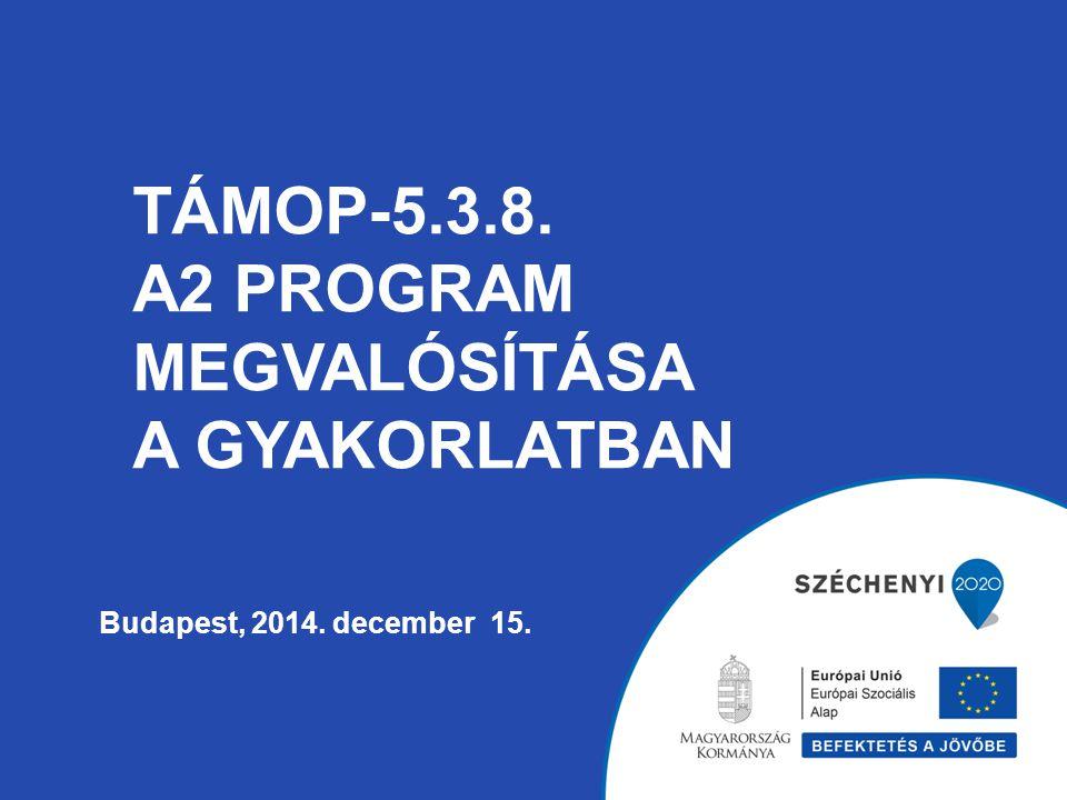 TÁMOP-5.3.8. A2 PROGRAM MEGVALÓSÍTÁSA A GYAKORLATBAN Budapest, 2014. december 15.