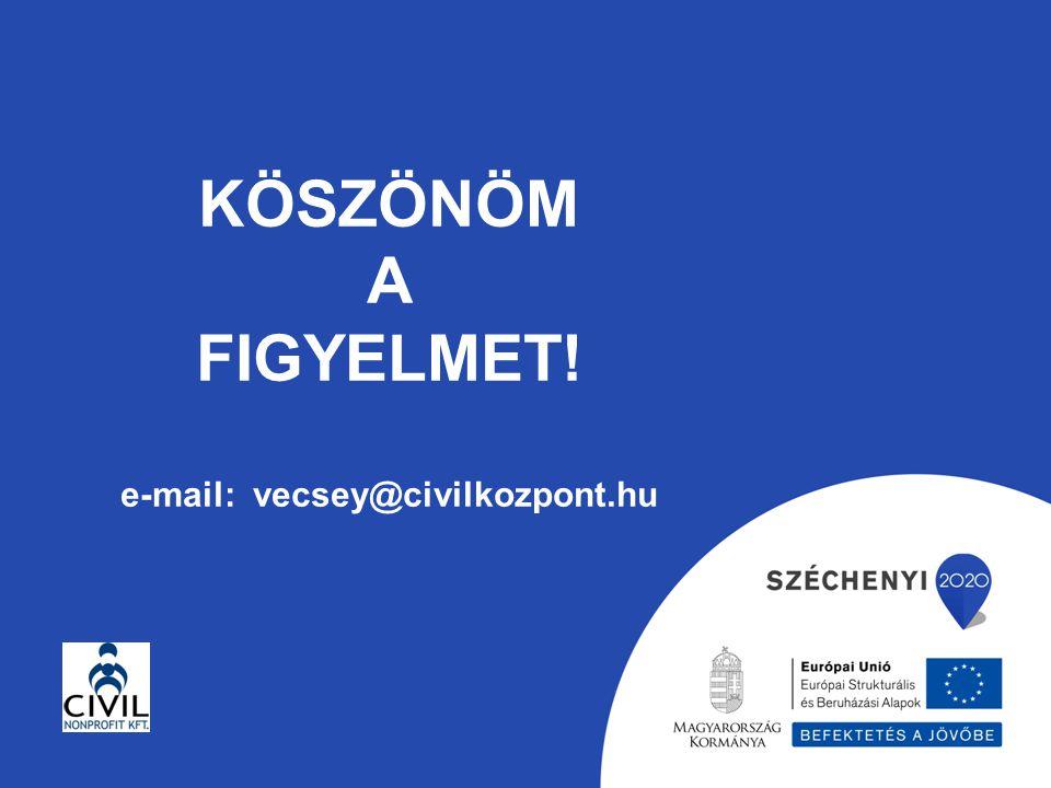 KÖSZÖNÖM A FIGYELMET! e-mail: vecsey@civilkozpont.hu