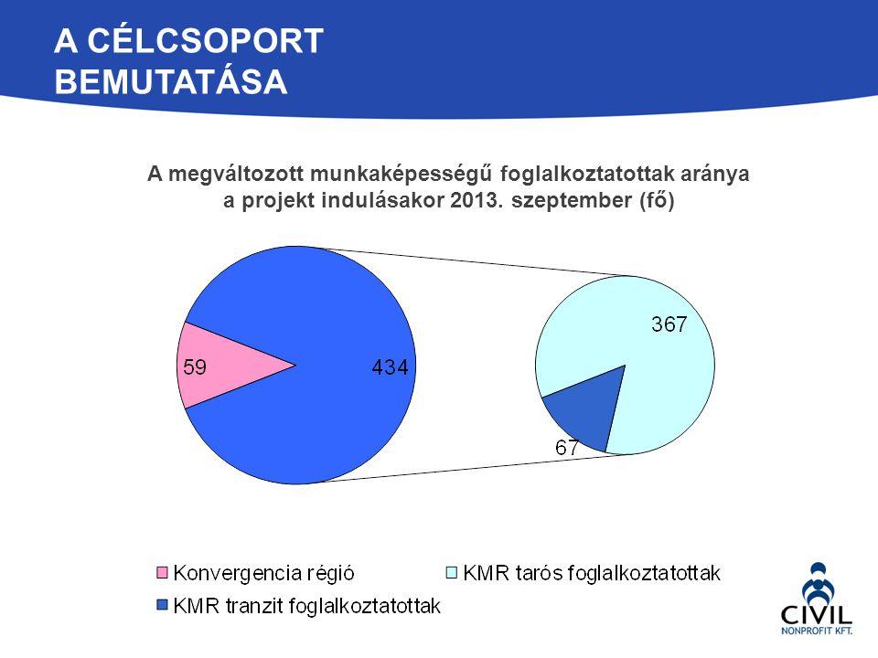 A CÉLCSOPORT BEMUTATÁSA A megváltozott munkaképességű foglalkoztatottak aránya a projekt indulásakor 2013. szeptember (fő)