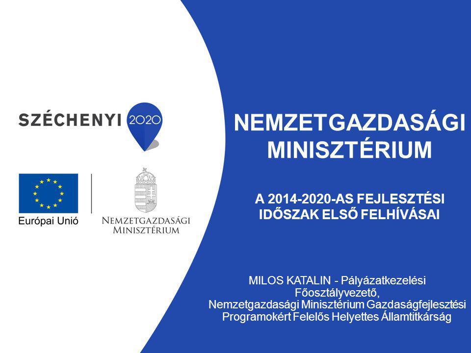 Gazdaságfejlesztési Programokért Felelős Helyettes Államtitkárság Új intézményi rendszer – 2014.