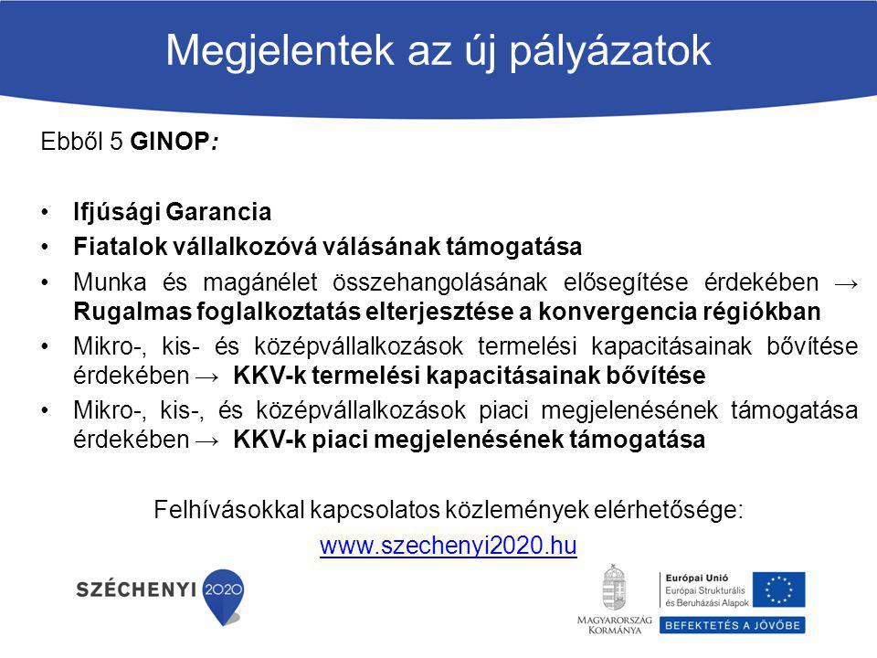 Megjelentek az új pályázatok Ebből 5 GINOP: Ifjúsági Garancia Fiatalok vállalkozóvá válásának támogatása Munka és magánélet összehangolásának elősegít