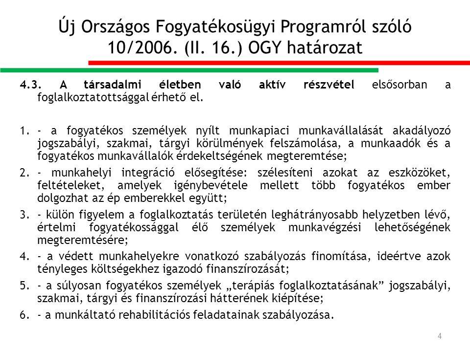 Új Országos Fogyatékosügyi Programról szóló 10/2006.
