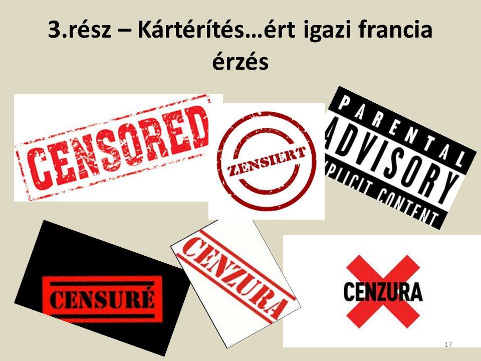 3.rész – Kártérítés…ért igazi francia érzés 17