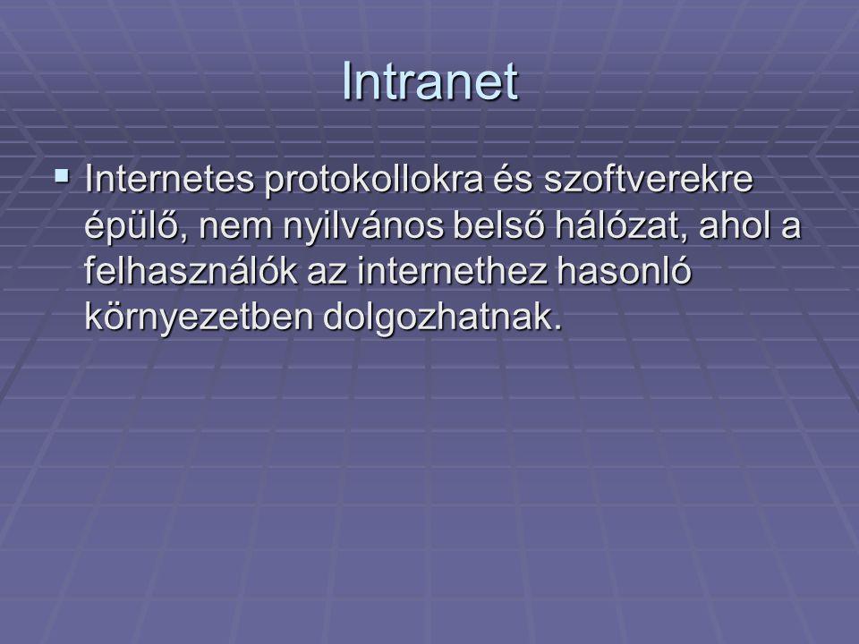 Intranet  Internetes protokollokra és szoftverekre épülő, nem nyilvános belső hálózat, ahol a felhasználók az internethez hasonló környezetben dolgozhatnak.