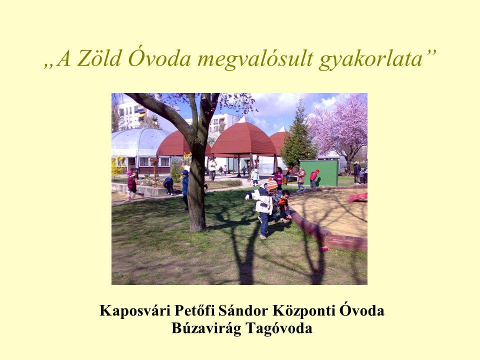 "Kaposvári Petőfi Sándor Központi Óvoda Búzavirág Tagóvoda ""A Zöld Óvoda megvalósult gyakorlata"""