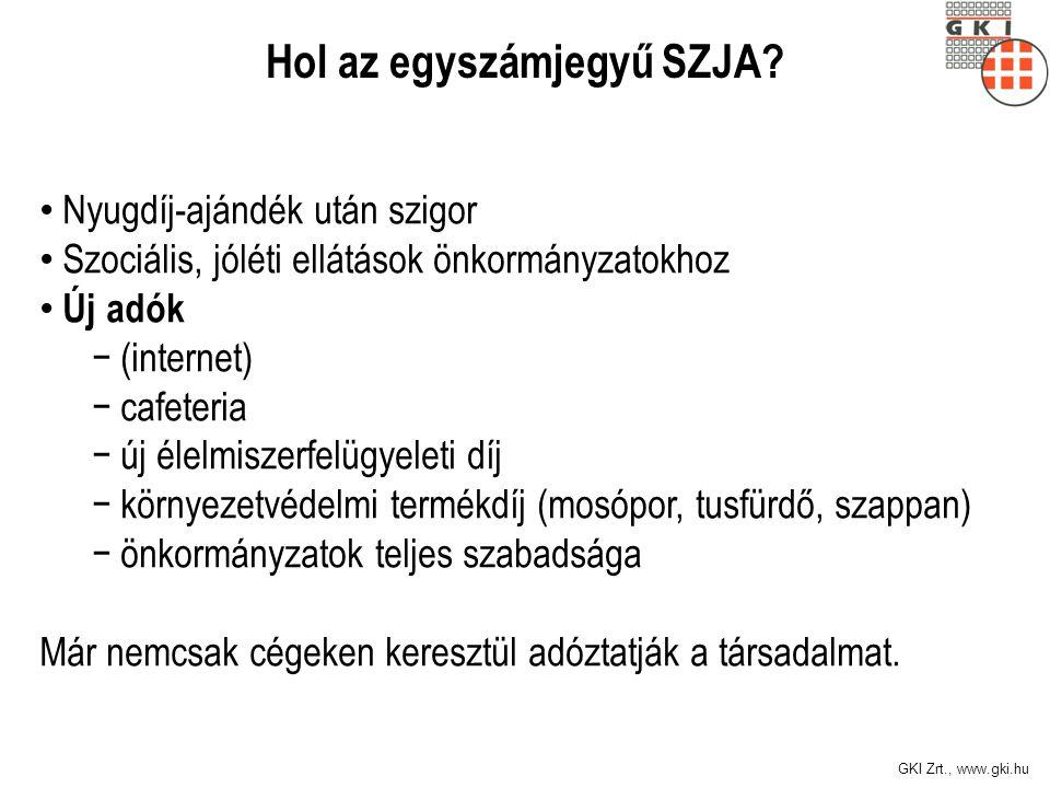 GKI Zrt., www.gki.hu Devizahitel Gazdaságpolitika okozta a veszteség nagy részét Az állam tisztességtelensége Akkor tisztességes, most nem.