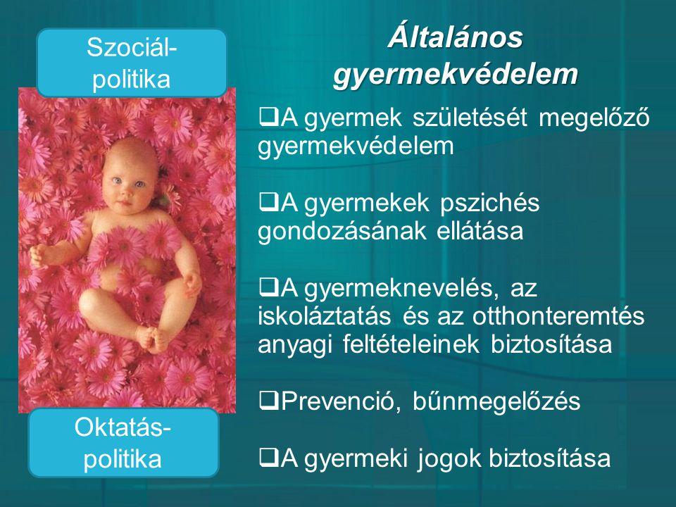 Általános gyermekvédelem  A gyermek születését megelőző gyermekvédelem  A gyermekek pszichés gondozásának ellátása  A gyermeknevelés, az iskoláztat