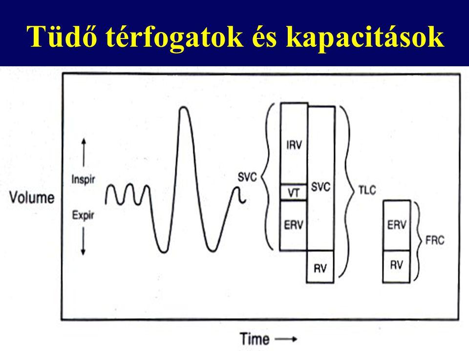 Hogyan mérjük az FRC-t ? Nitrogen kimosás Inert gáz hígulás Plethysmographia