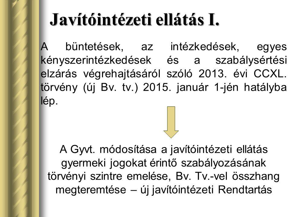 Javítóintézeti ellátás I. A büntetések, az intézkedések, egyes kényszerintézkedések és a szabálysértési elzárás végrehajtásáról szóló 2013. évi CCXL.