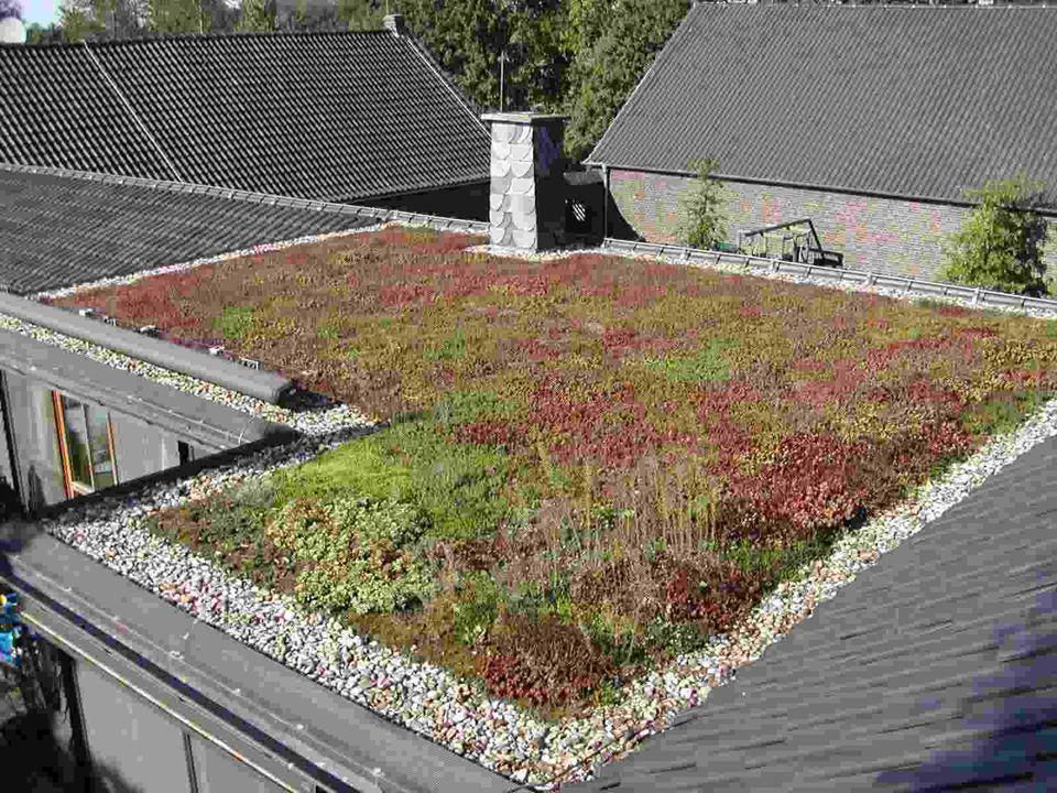 50 mm / nap csapadékmennyiség = 50 liter/m 2 Növényzettel telepíthető lapostető felület legalább 300.000 m 2.