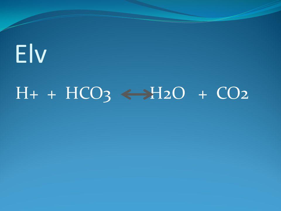 Elv H+ + HCO3 H2O + CO2