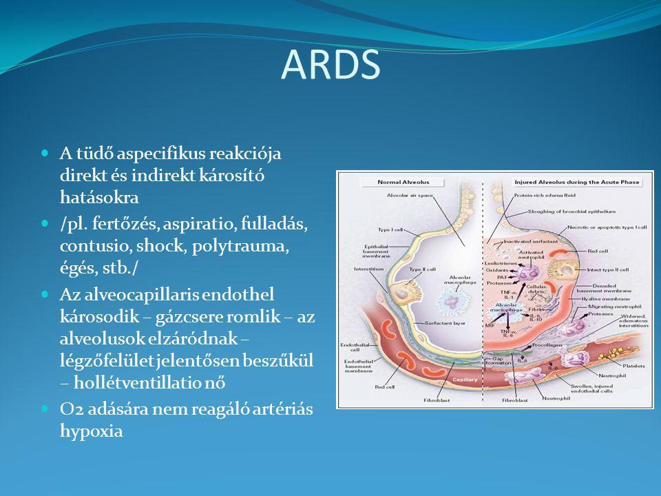 ARDS A tüdő aspecifikus reakciója direkt és indirekt károsító hatásokra /pl. fertőzés, aspiratio, fulladás, contusio, shock, polytrauma, égés, stb./ A
