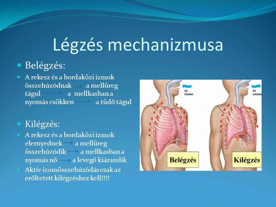 Mellkas RTG eltérések 1.atelectasia / tumor, idegentest, pleuralis betegségek/ 2.