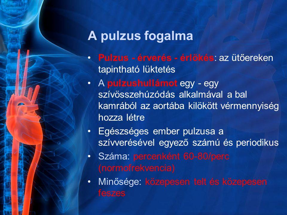 A pulzus fogalma Pulzus - érverés - érlökés: az ütőereken tapintható lüktetés A pulzushullámot egy - egy szívösszehúzódás alkalmával a bal kamrából az aortába kilökött vérmennyiség hozza létre Egészséges ember pulzusa a szívverésével egyező számú és periodikus Száma: percenként 60-80/perc (normofrekvencia) Minősége: közepesen telt és közepesen feszes