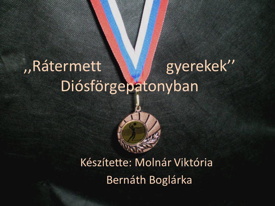 ,,Rátermett gyerekek'' Diósförgepatonyban Készítette: Molnár Viktória Bernáth Boglárka