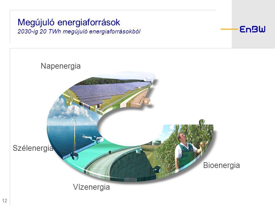12 Bioenergia Vízenergia Szélenergia Napenergia Megújuló energiaforrások 2030-ig 20 TWh megújuló energiaforrásokból