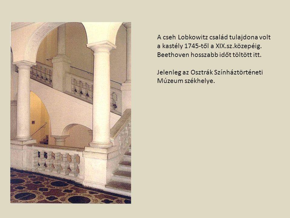 A cseh Lobkowitz család tulajdona volt a kastély 1745-től a XIX.sz.közepéig. Beethoven hosszabb időt töltött itt. Jelenleg az Osztrák Színháztörténeti