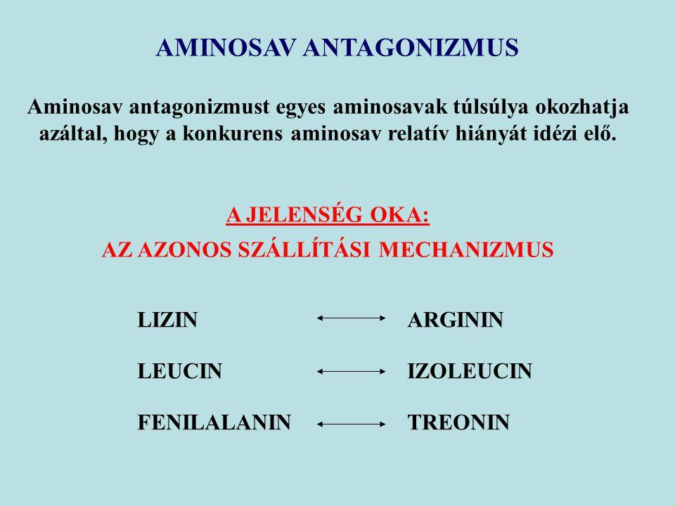 AMINOSAV ANTAGONIZMUS Aminosav antagonizmust egyes aminosavak túlsúlya okozhatja azáltal, hogy a konkurens aminosav relatív hiányát idézi elő.