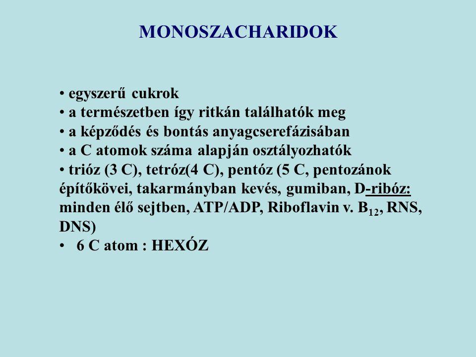 MONOSZACHARIDOK egyszerű cukrok a természetben így ritkán találhatók meg a képződés és bontás anyagcserefázisában a C atomok száma alapján osztályozhatók trióz (3 C), tetróz(4 C), pentóz (5 C, pentozánok építőkövei, takarmányban kevés, gumiban, D-ribóz: minden élő sejtben, ATP/ADP, Riboflavin v.