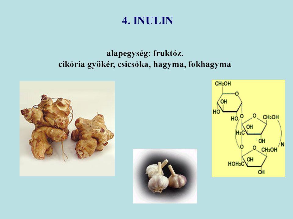 alapegység: fruktóz. cikória gyökér, csicsóka, hagyma, fokhagyma 4. INULIN