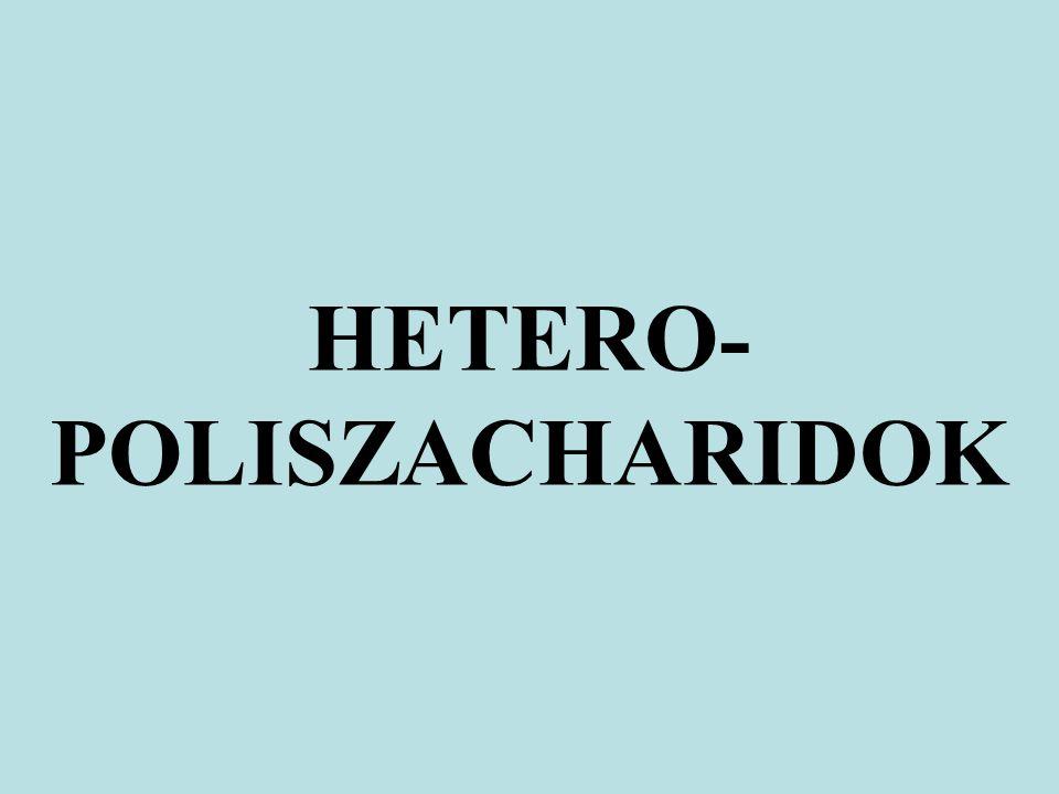 HETERO- POLISZACHARIDOK