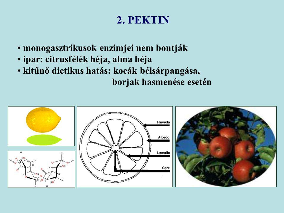 monogasztrikusok enzimjei nem bontják ipar: citrusfélék héja, alma héja kitűnő dietikus hatás: kocák bélsárpangása, borjak hasmenése esetén 2. PEKTIN