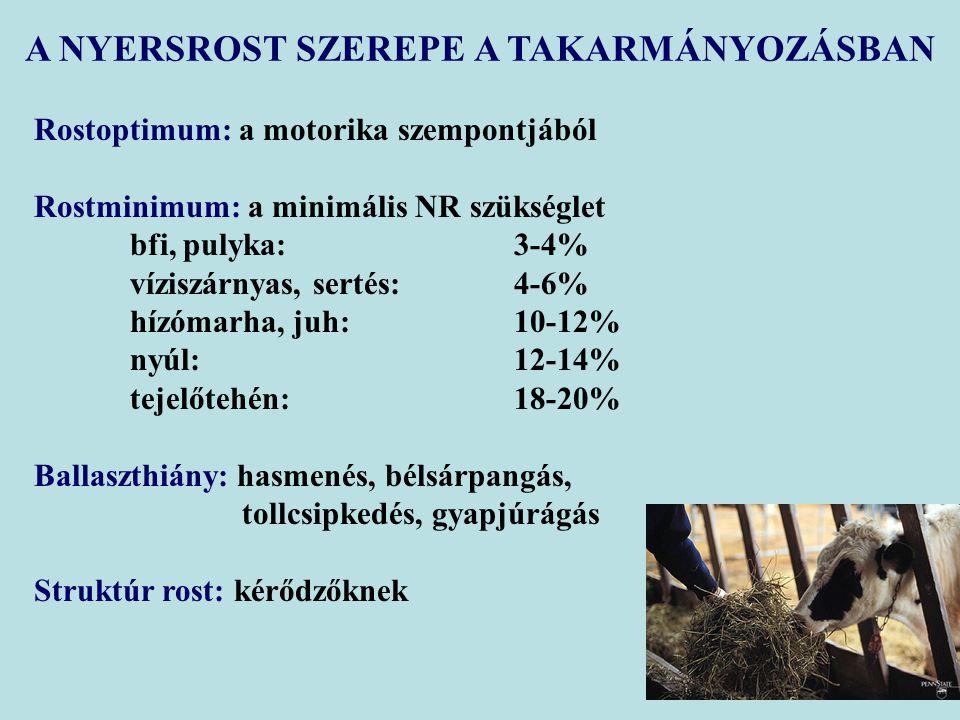Rostoptimum: a motorika szempontjából Rostminimum: a minimális NR szükséglet bfi, pulyka:3-4% víziszárnyas, sertés:4-6% hízómarha, juh:10-12% nyúl:12-