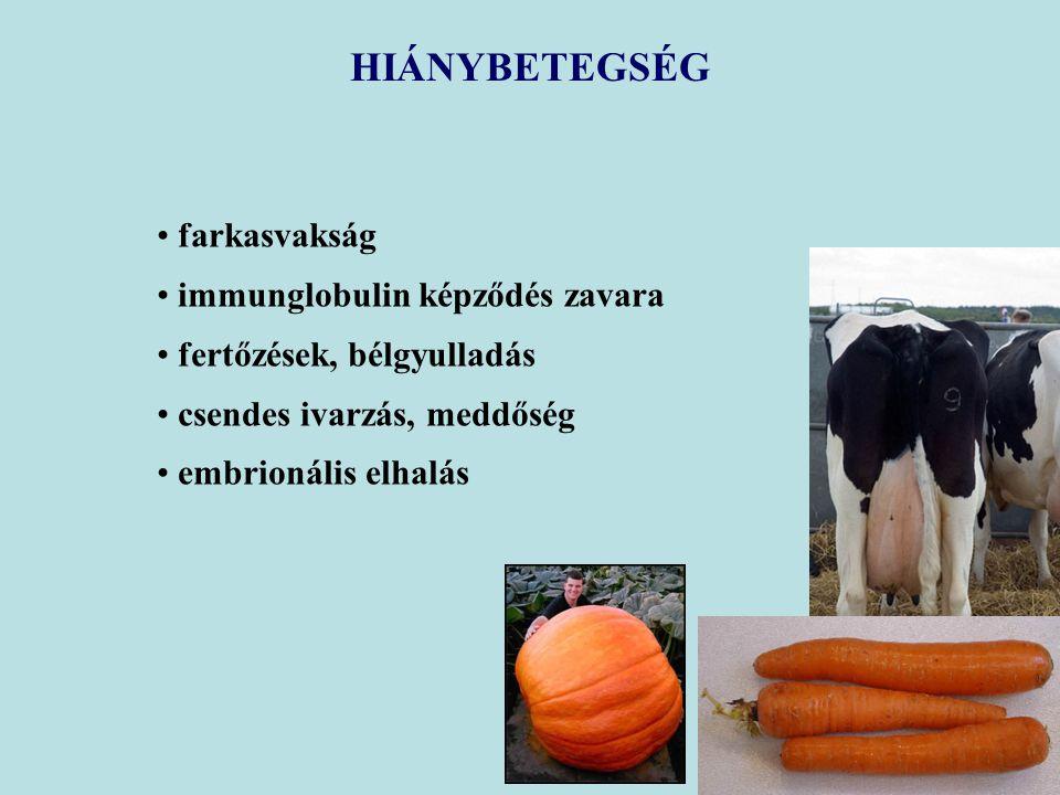 farkasvakság immunglobulin képződés zavara fertőzések, bélgyulladás csendes ivarzás, meddőség embrionális elhalás HIÁNYBETEGSÉG