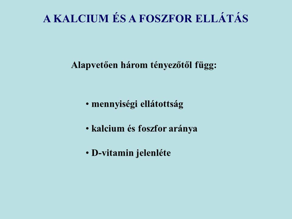 A KALCIUM ÉS A FOSZFOR ELLÁTÁS Alapvetően három tényezőtől függ: mennyiségi ellátottság kalcium és foszfor aránya D-vitamin jelenléte