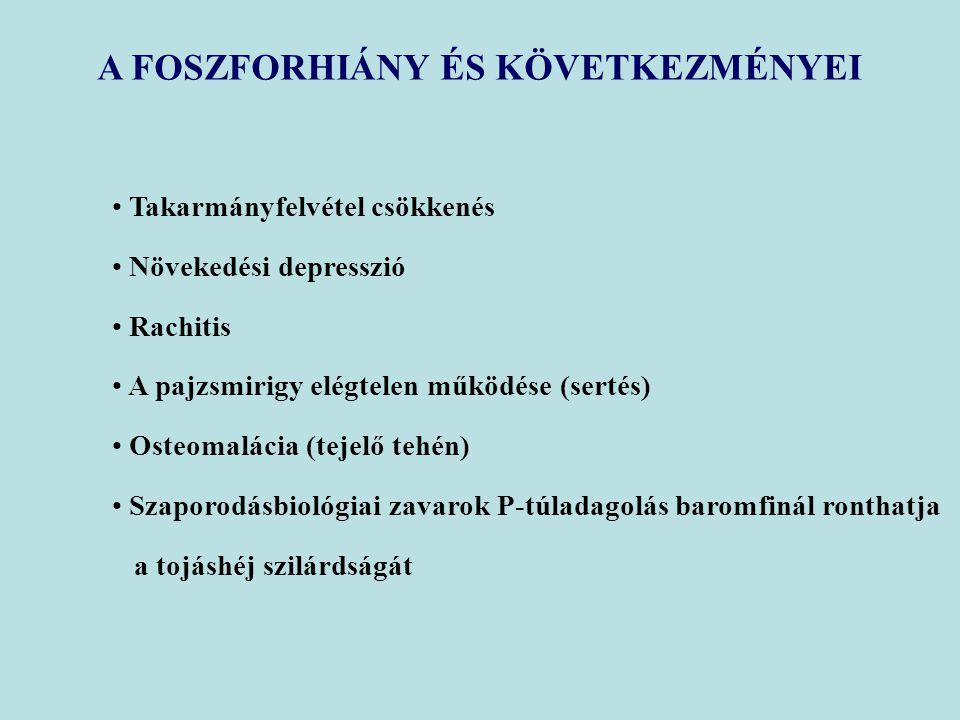 A FOSZFORHIÁNY ÉS KÖVETKEZMÉNYEI Takarmányfelvétel csökkenés Növekedési depresszió Rachitis A pajzsmirigy elégtelen működése (sertés) Osteomalácia (tejelő tehén) Szaporodásbiológiai zavarok P-túladagolás baromfinál ronthatja a tojáshéj szilárdságát