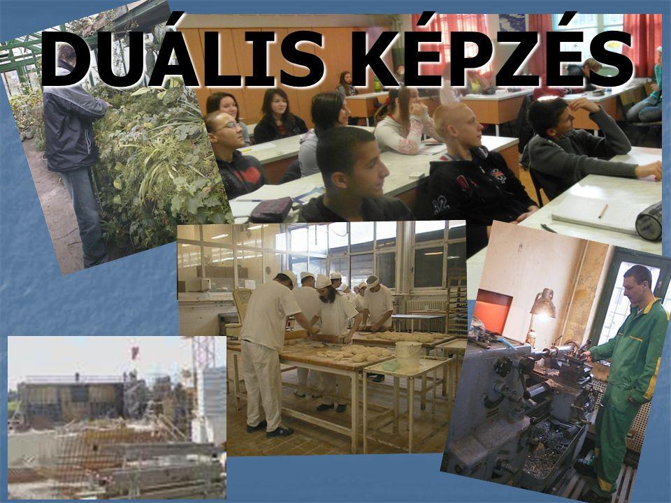 DUÁLIS KÉPZÉS