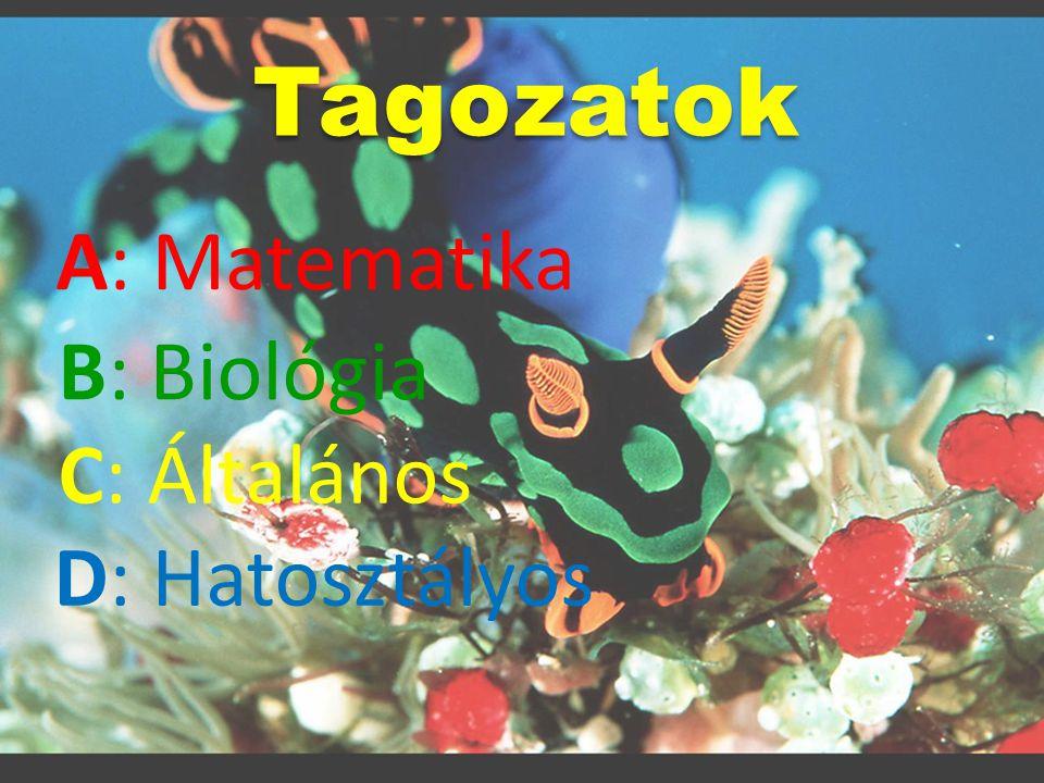Tagozatok A: Matematika B: Biológia C: Általános D: Hatosztályos
