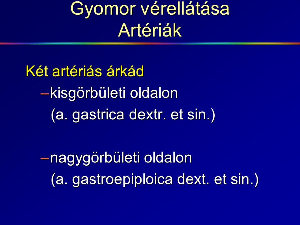 Gyomor polyp